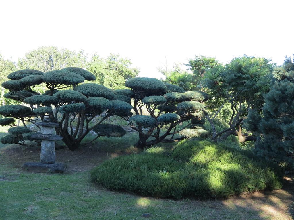 Jardin zen d 39 erik borja dr me un jardin con u dans la t flickr for Jardin zen drome