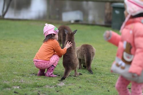 At Ballarat Wildlife Park