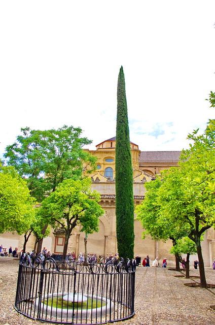 Cordoue c rdoba 14 mezquita catedral de c rdoba le for Le jardin interieur