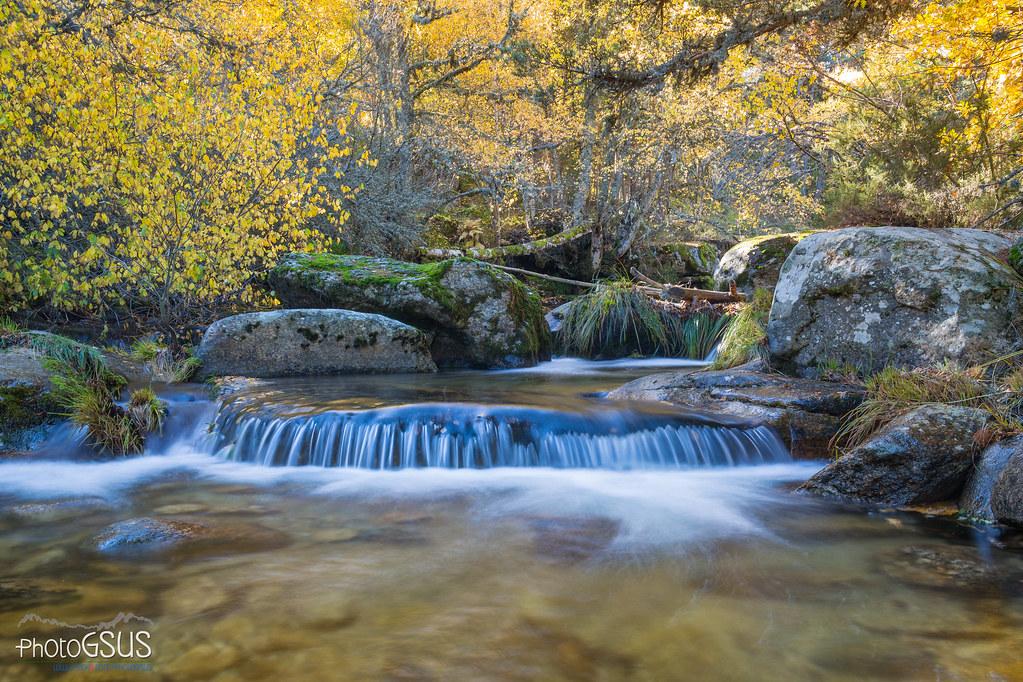 Sierra de Guadarrama Spain  city photos : Autumn in Sierra de Guadarrama National Park Spain | Flickr