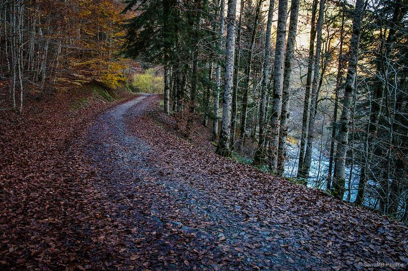 La pista y el río Irati.