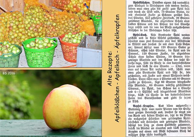 Herbstzeit, Apfelzeit, Streuobstwiesen. Alte Apfelrezepte: Apfel-Auflauf, Apfel-Bettelmann, Äpfel-Charlotte mit Schwarzbrot, Apfelcremespeise, Apfelmus, Apfelklößchen, Apfelkoch, Äpfelkrapfen,Äpfel-Eis, englische Apfel-Fritters, Mannheimer Apfelkuchen ... Fotos und Collagen: Brigitte Stolle 2016