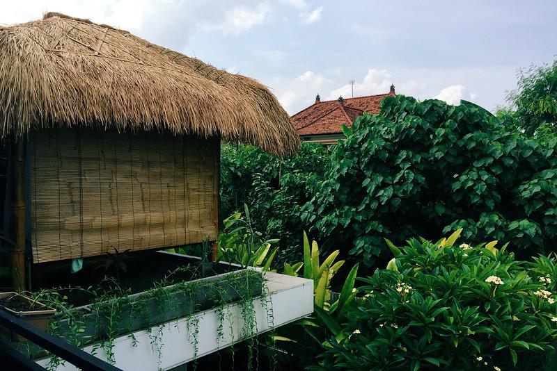 Canggu Airbnb 2