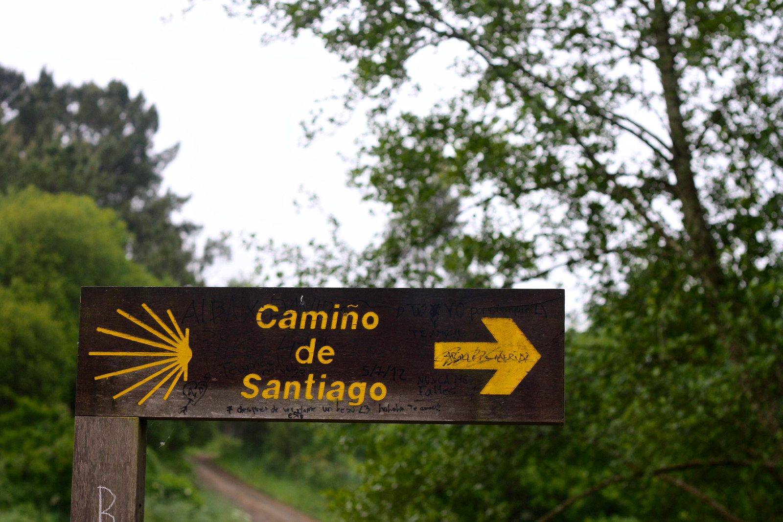 Wooden sign for the Camino de Santiago in Galicia, Spain