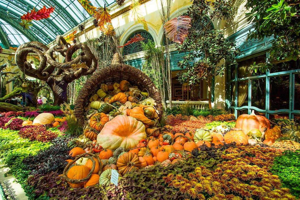 Bellagio Conservatory And Botanical Gardens Autumn