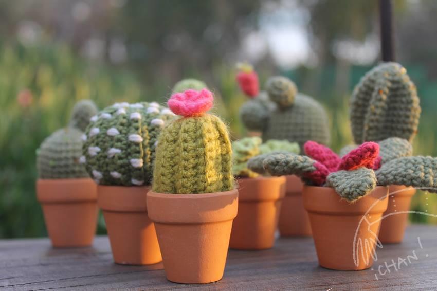 Cactus Amigurumi Venta : cactus amigurumi 100% algodon Encargos y consultas en ...