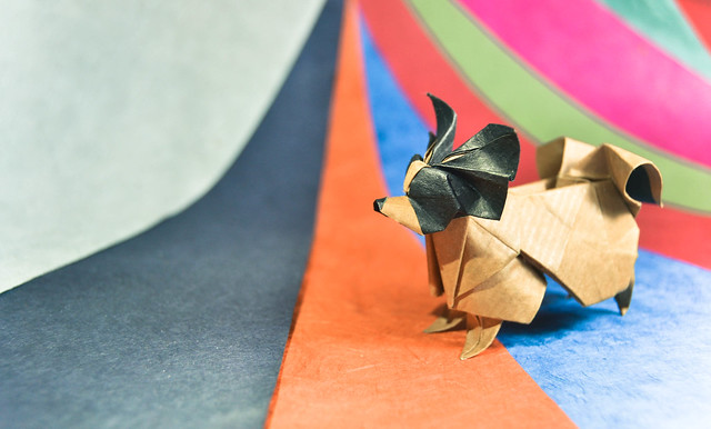 Step By Step Instructions How To Make Origami A Poodle. Stock ... | 386x640