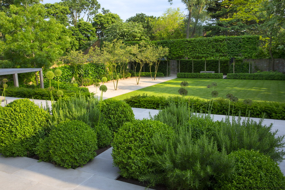 Formal structural garden 1 charlotte rowe copyright marian for Sunny landscape designs