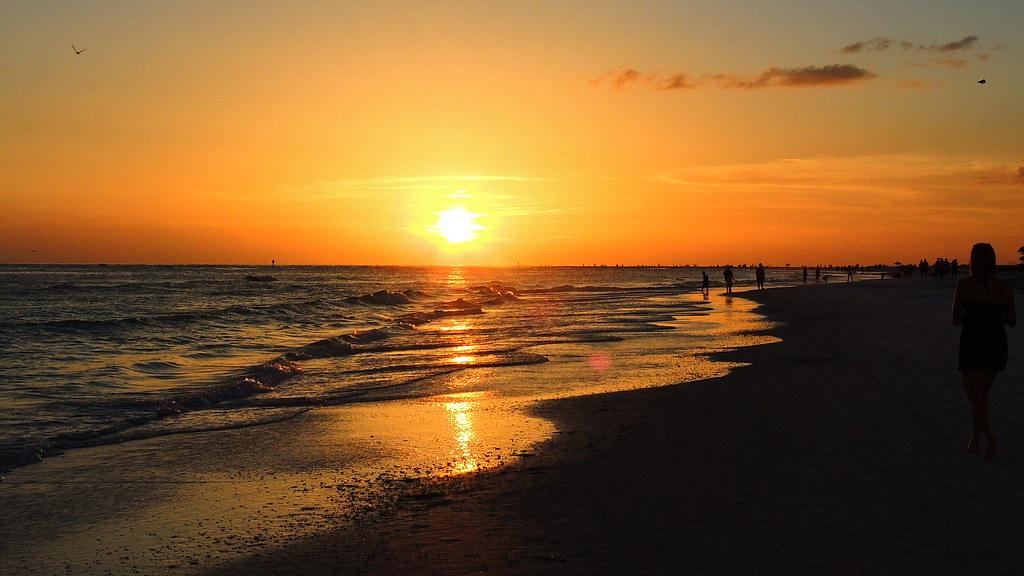 Siesta Key Beach Rentals Palm Bay Club