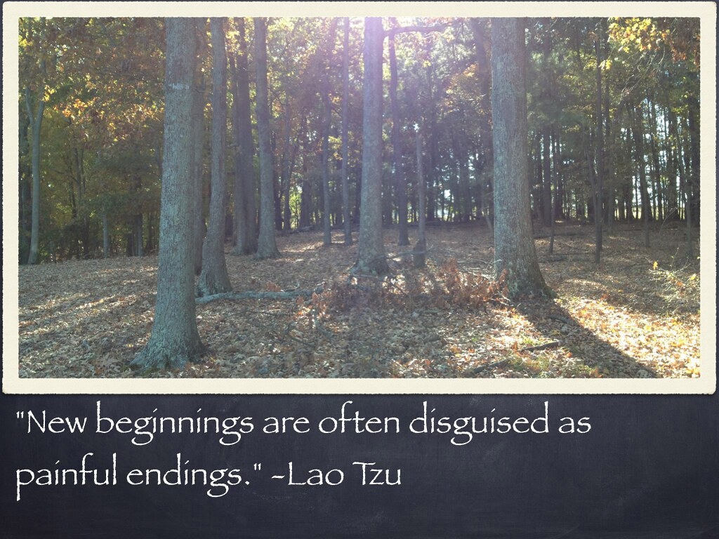 "New Beginnings New Beginnings Are Often Disguised As: ""New Beginnings Are Often"