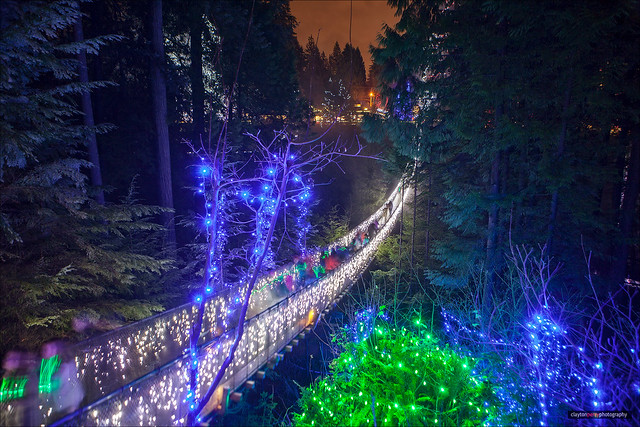 Canyon Lights At Capilano [Explored]