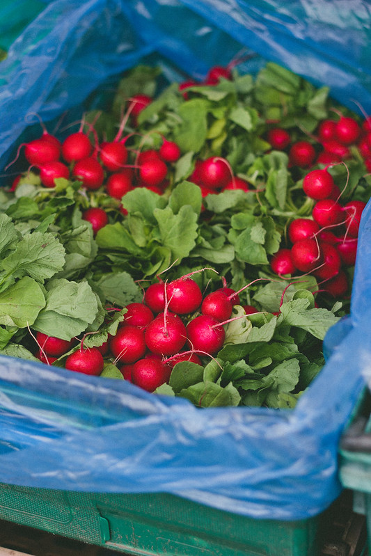 {rose gardens & farmers markets} via chevrons & éclairs