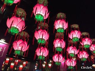 CIRCLEG 遊記 香港 銅鑼灣 維多利亞公園 維園 花燈會 綵燈會 2016 (19)