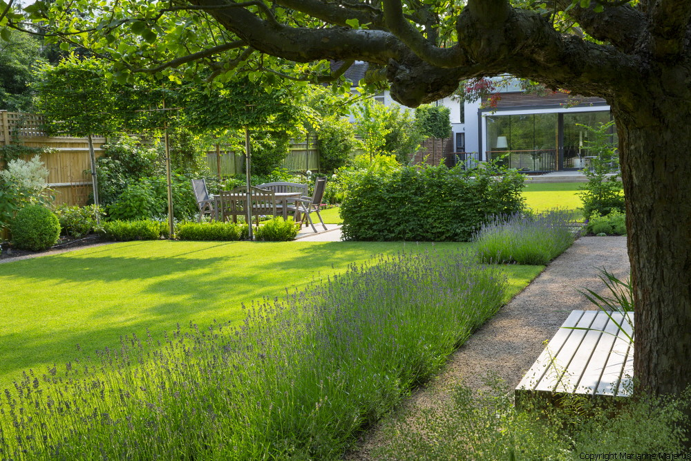 Garden in wimbledon 1 charlotte rowe copyright marianne ma for Designing a large garden from scratch