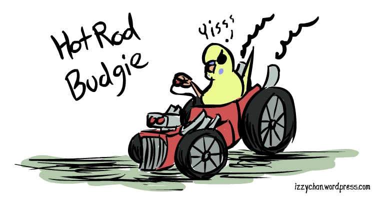 budgie in a rat rod yisss