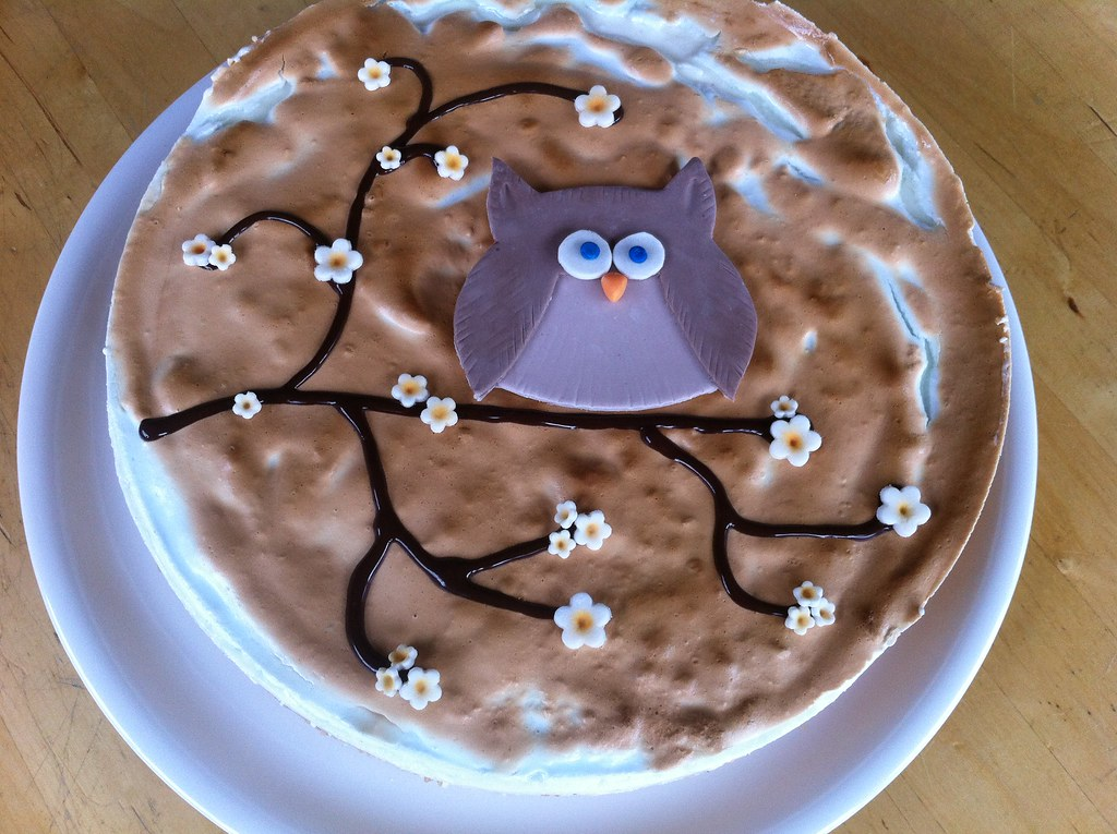 Torte Eule Rettes Cakes Flickr