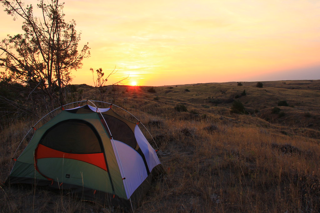 Morning Camp In The Juniper Dunes Wilderness The United