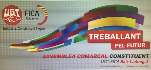 Assemblea Comarcal Constituent UGT-FICA 17 11 16