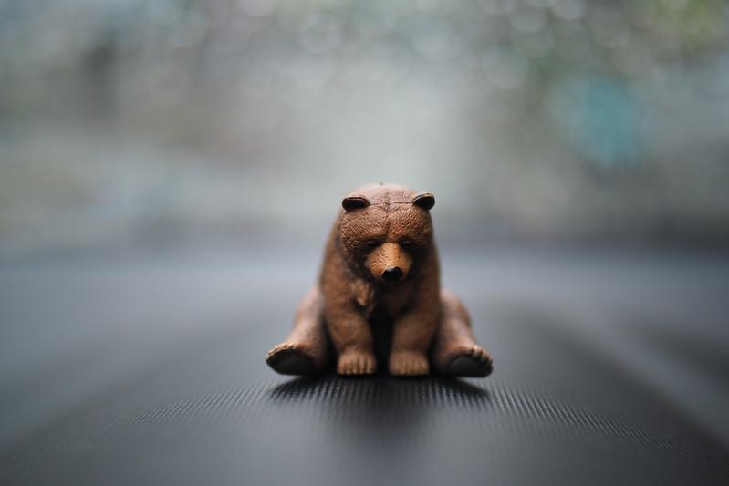 睡眠熊|Olympus 25mm f1.2 PRO