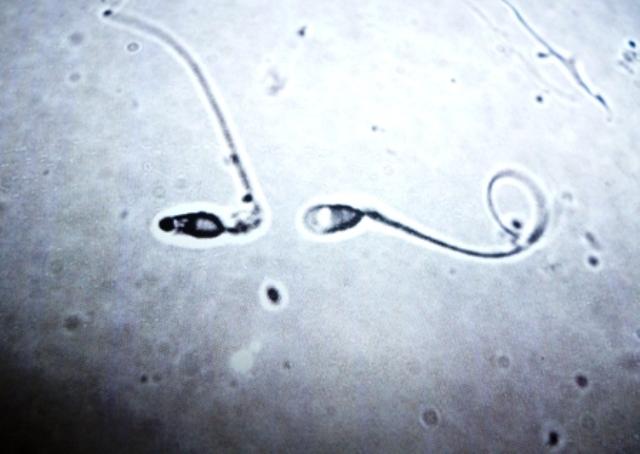 kak-sdat-spermu-v-kemerovo