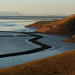 Coyote Hills and SF Bay