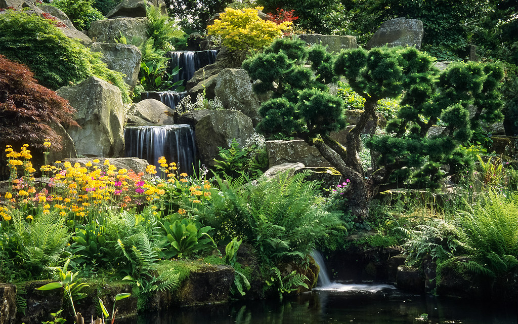 Wisley Gardens RHS & hotels & places to stay - Great British Gardens
