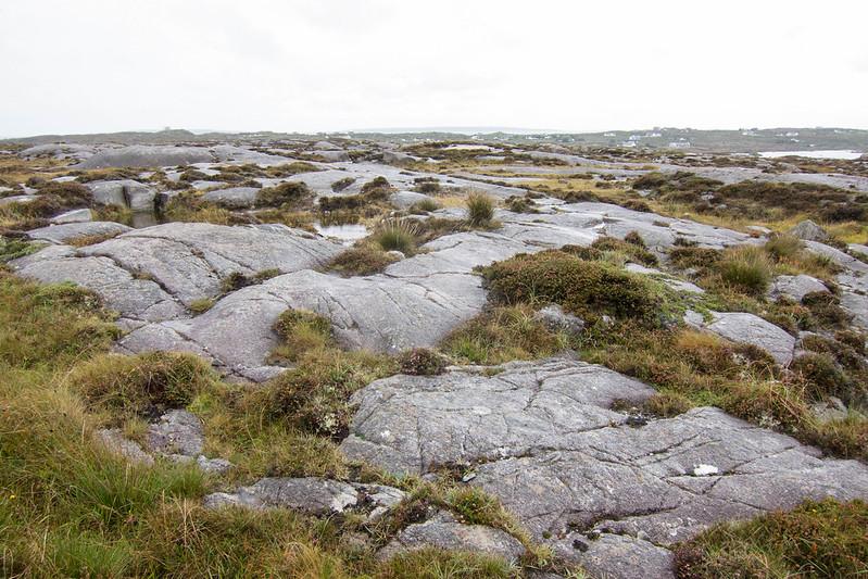 Among the rocks