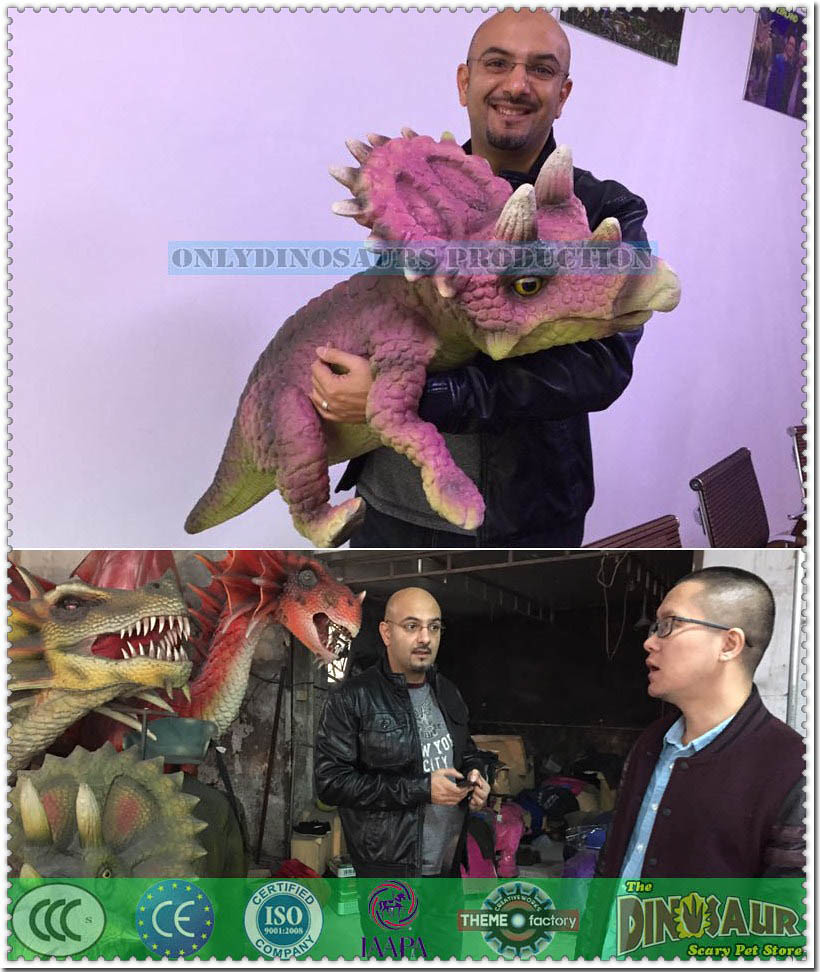 Qatar Client Hug Baby Triceratops Puppet