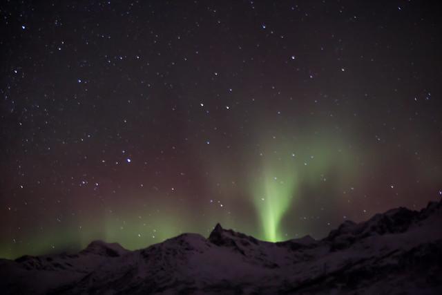 Kattfjordvatnet aurora