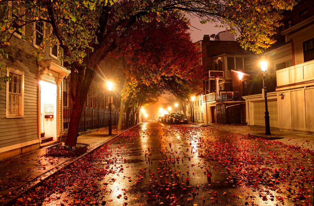 City Street Autumn Leaves On A City Street In Boston