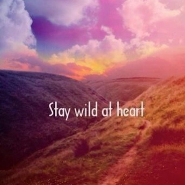 stay wild at heart quote quotes adventure freedom flickr. Black Bedroom Furniture Sets. Home Design Ideas