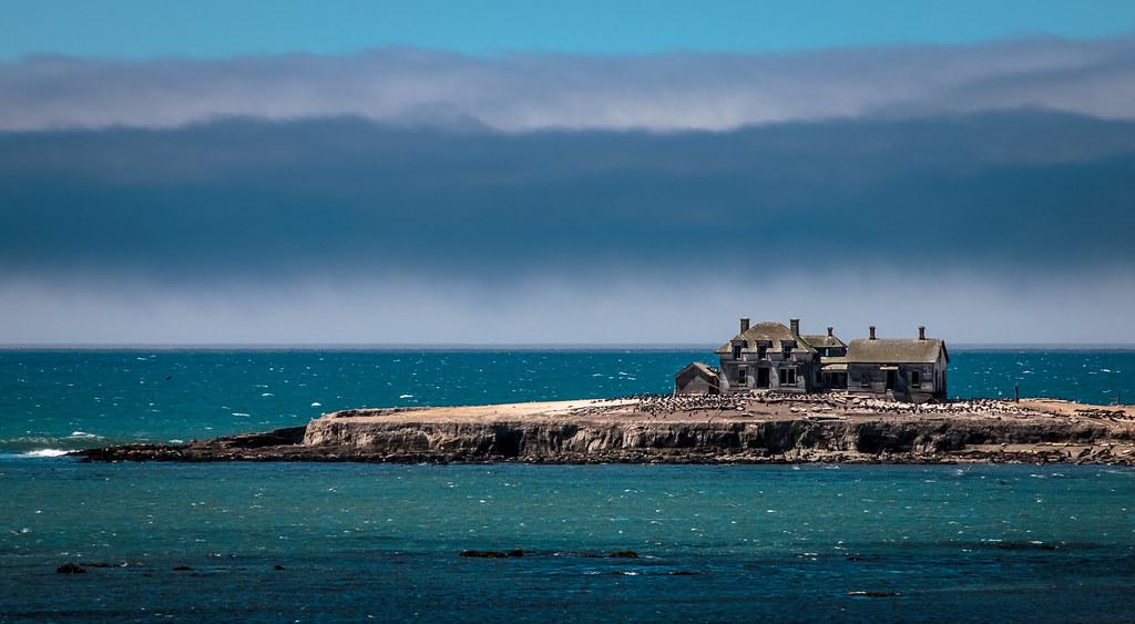 ano nuevo island ano nuevo island san mateo county