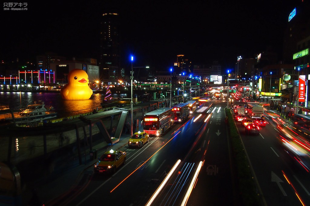 lights of night city ��������� hofman rubber duck keelung