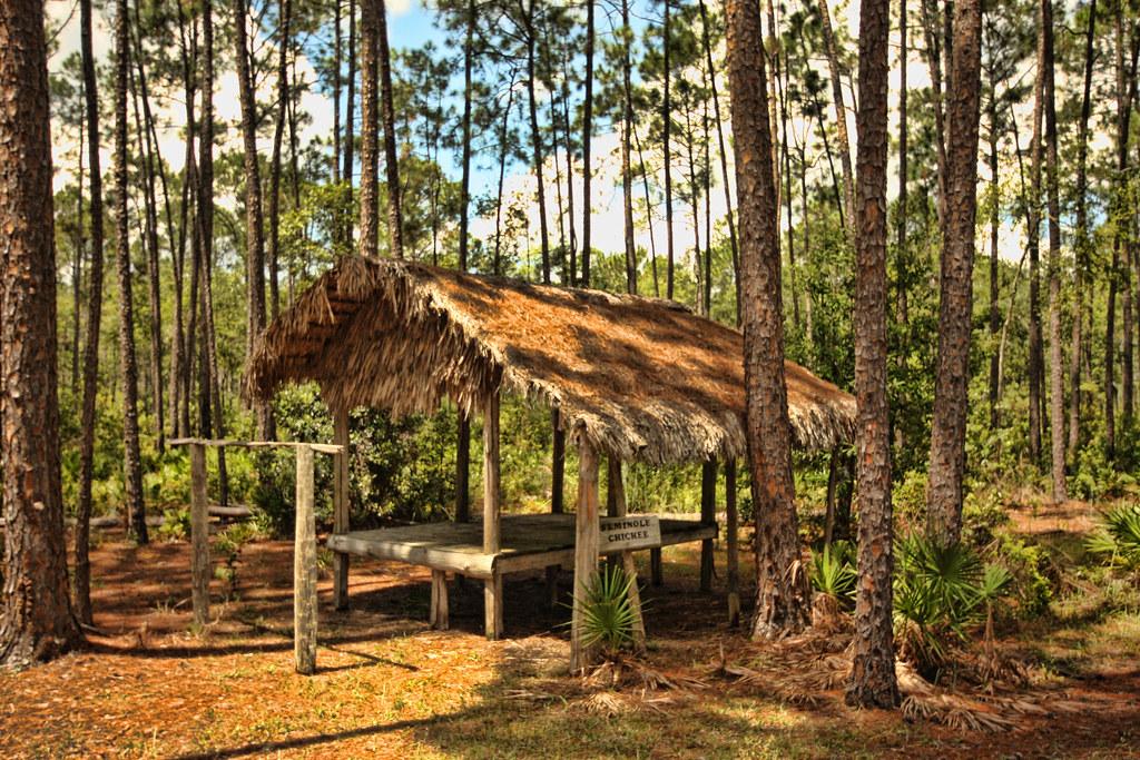 Seminole Chickee Okefenokee Swamp Georgia The Chickee