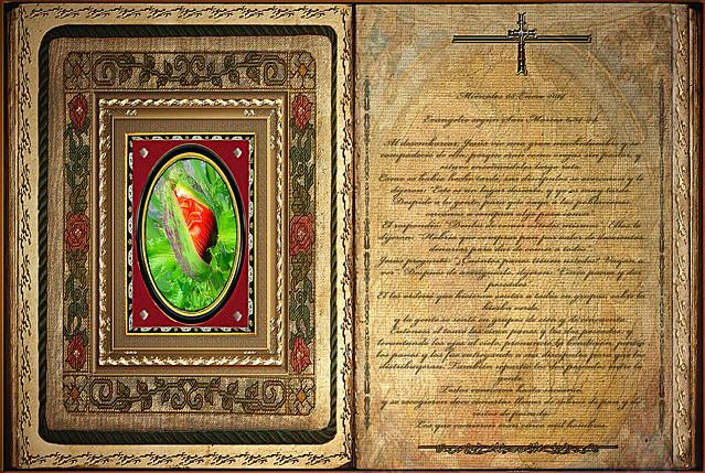 Evangelio seg 250 n san marcos 6 34 44 mi 233 rcoles 08 enero 2014 flickr