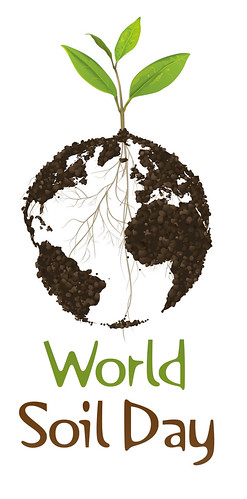 World Soil Day graphic