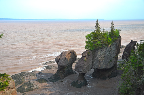 "Hopewell Rocks - ""Flower Pots"""