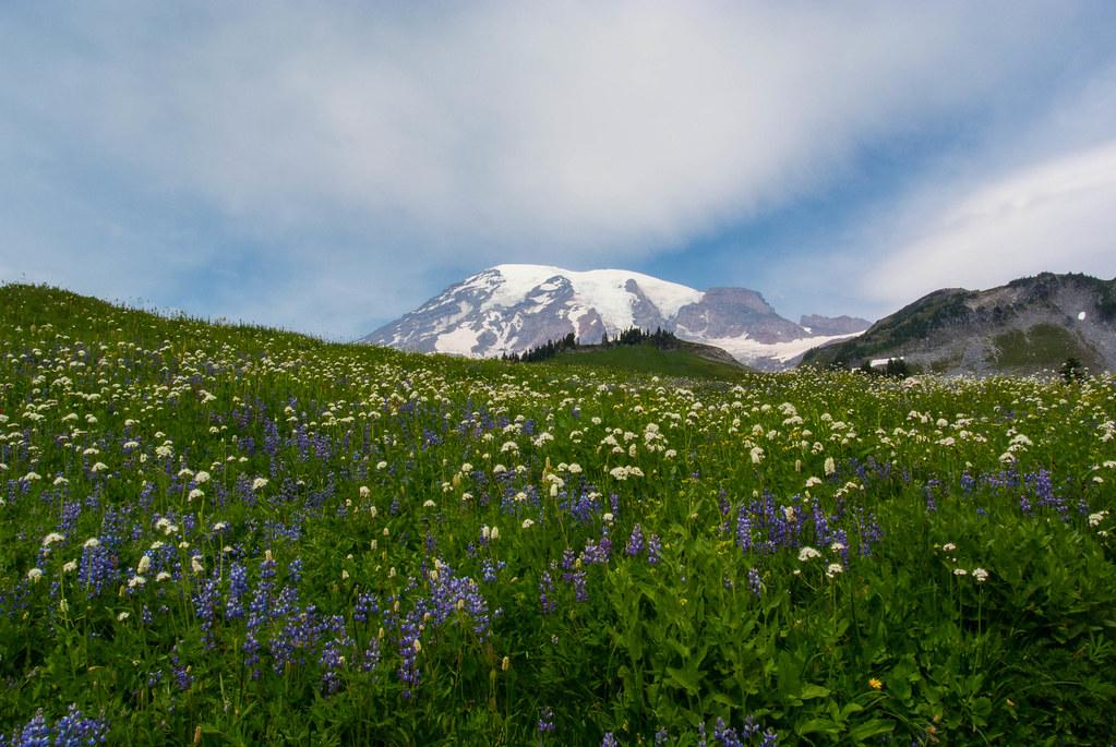 Mount Rainier (20/52)