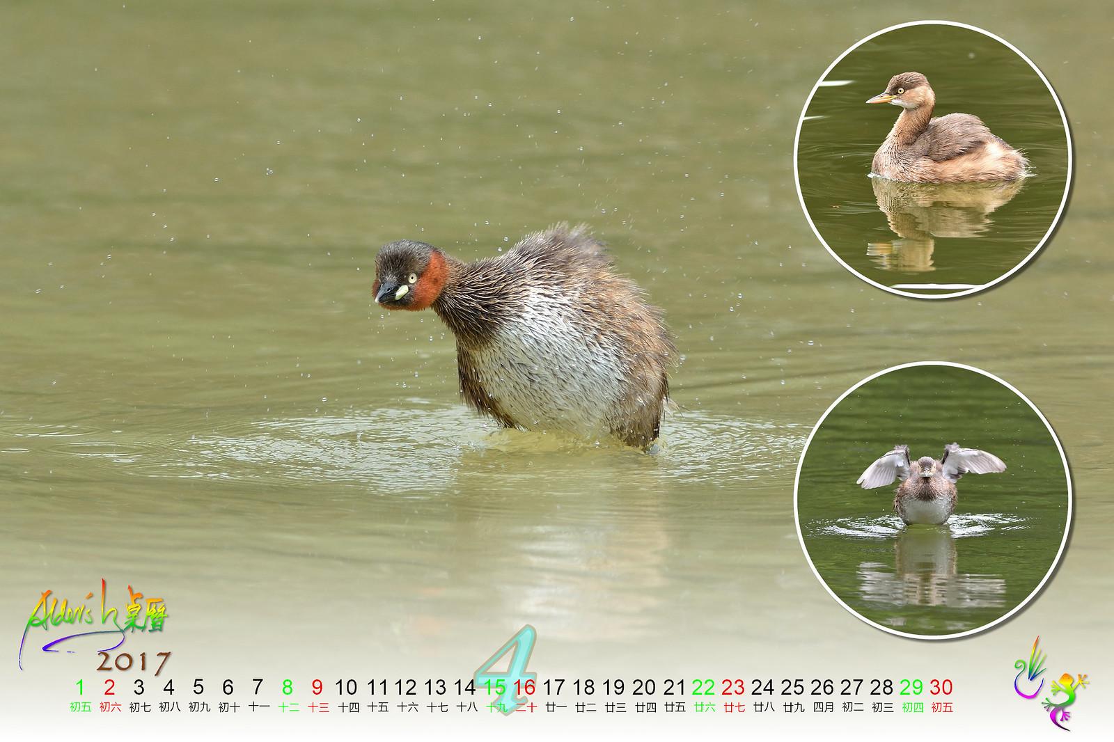 Calendar_03alder_04