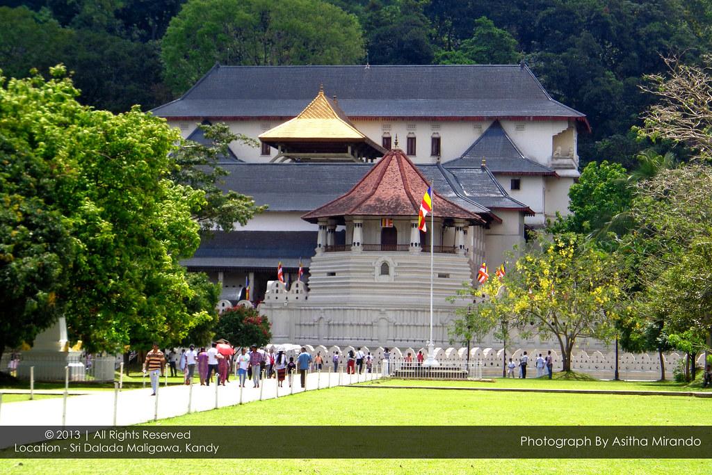 Sri dalada maligawa essay help
