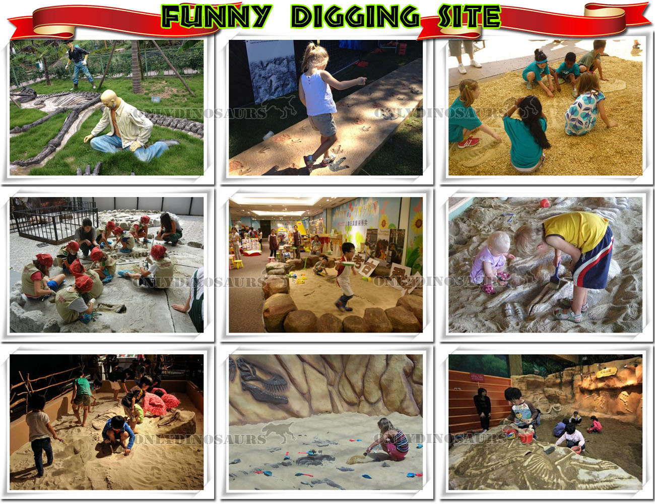 Funny Fossil Digging Site