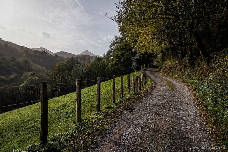 Camino de Orabidea