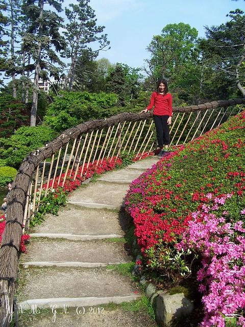 japanese garden albert kahn paris vase des 1000 fleurs mus e guin e paris jardin japonais. Black Bedroom Furniture Sets. Home Design Ideas