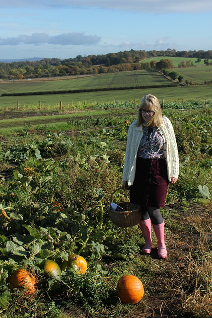 Pumpkin patch, Edinburgh