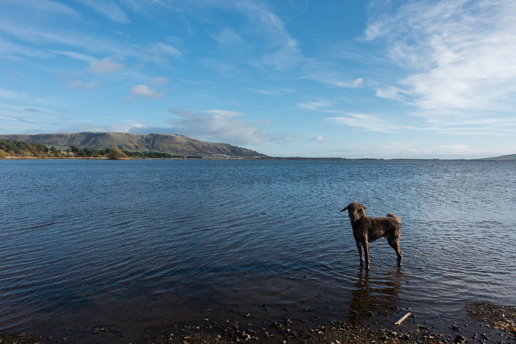 Loch Leven-03543