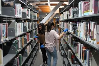 Two people dusting metal bookshelves