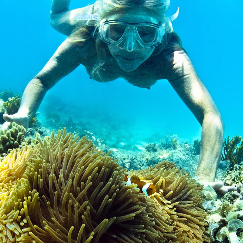 upolu reef free diving