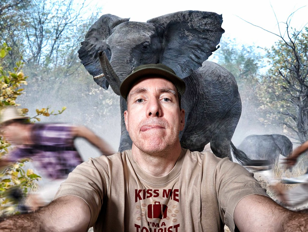 Man takes selfie with wild elephant