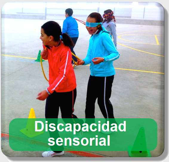 Icono discapacidad sensorial