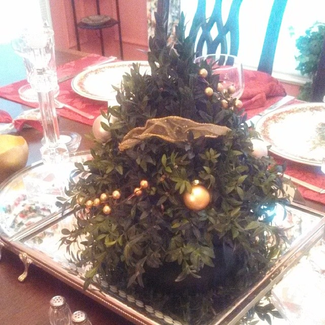 Sometimes less is more diy holiday centerpiece boxwood